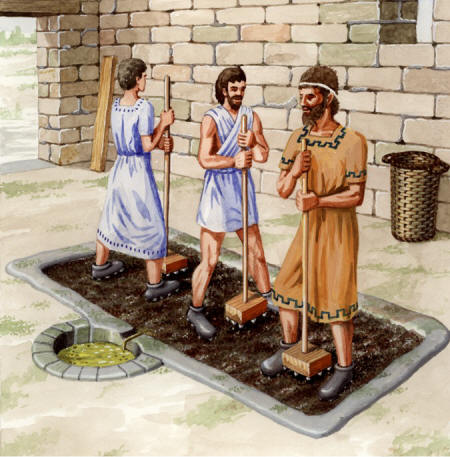 aceite de oliva romanos